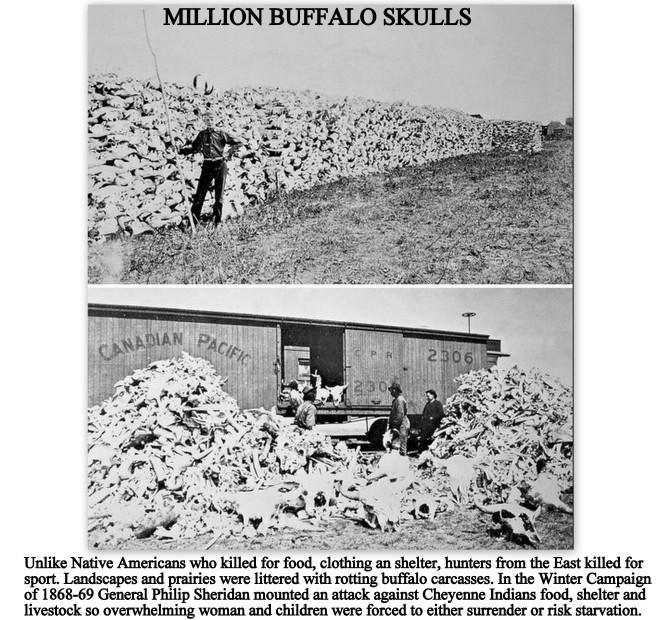 Million Buffalo